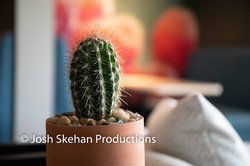 Video Production Scottsdale-18