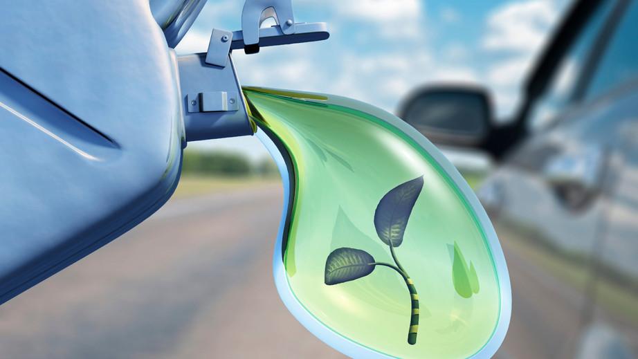 Био для бака: перспективы развития низкоуглеродного моторного топлива в России
