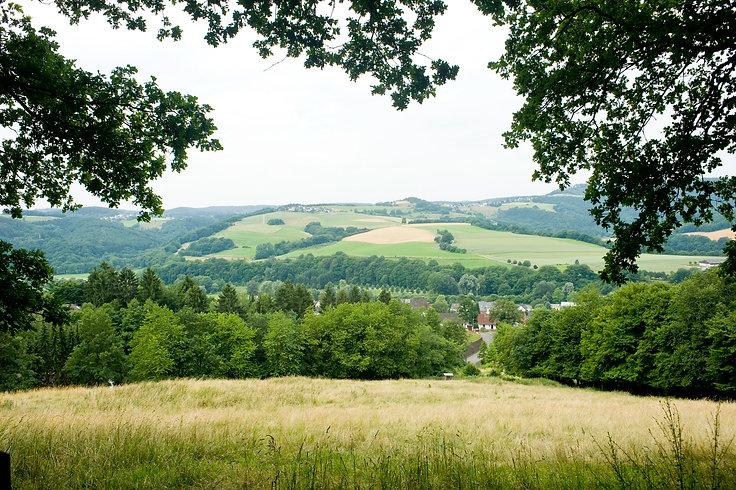 Natur und Wälder im Westerwald