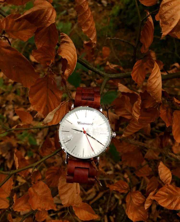 Basic Watch Herbst