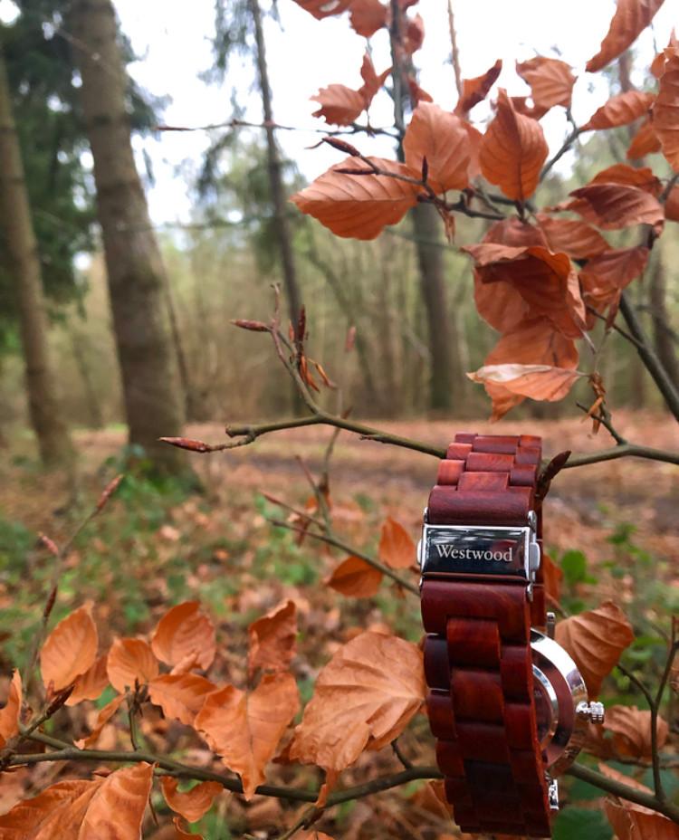 Basic Watch rot im Herbst