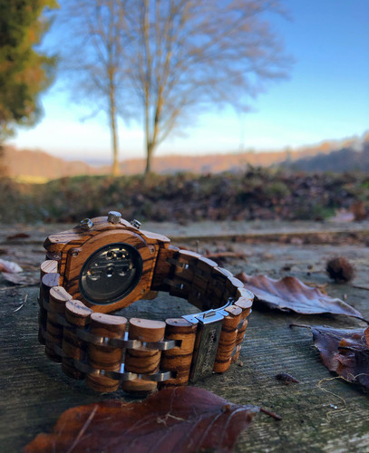 Herbst Automatic Watch Hollywood
