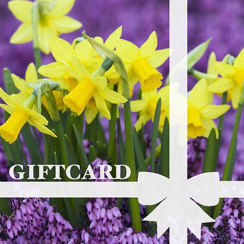 Gift Card Design Daffofil