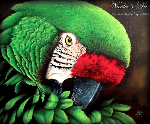 green-macaw_edited_edited.jpg