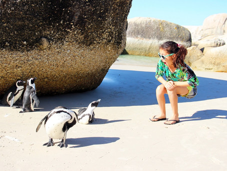 13 Reasons to Never Take Your Kids to Cape Town