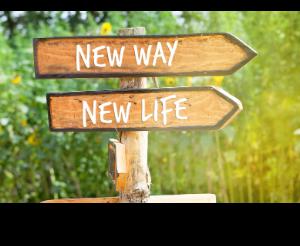 Une nouvelle vie a commencé - Ein neues Leben hat begonnen