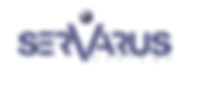 Sevarus systems small logo.png