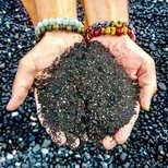 Healing Black sand Kona, Hawaii 2017
