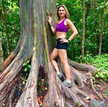 Beautiful Rainbow Eucalyptus Trees in Maui Hawai! Eucalyptus is not only a Koola Bears Bestie! Its essential oil is benefical in opening up our airways to allow deeper breathing.