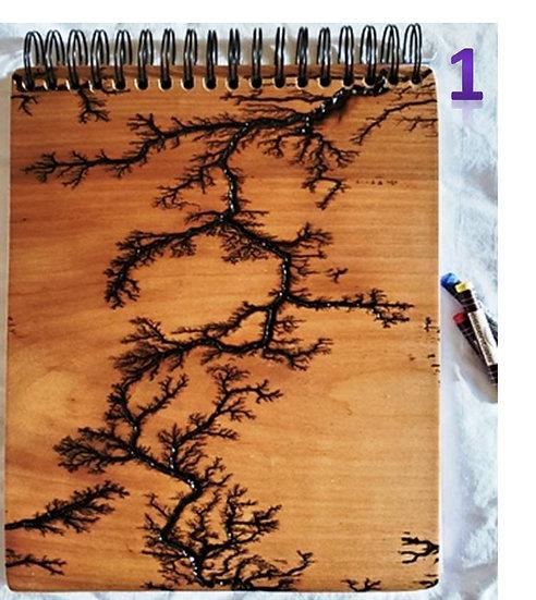 Lichtenberg Sketchbook
