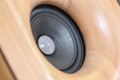 Aristoxène CLN6. Détail haut parleur enceinte large bande en bois massif