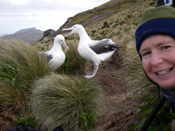 Selfie-with-courting-royal-albatrosses-photo-Alison-Ballance