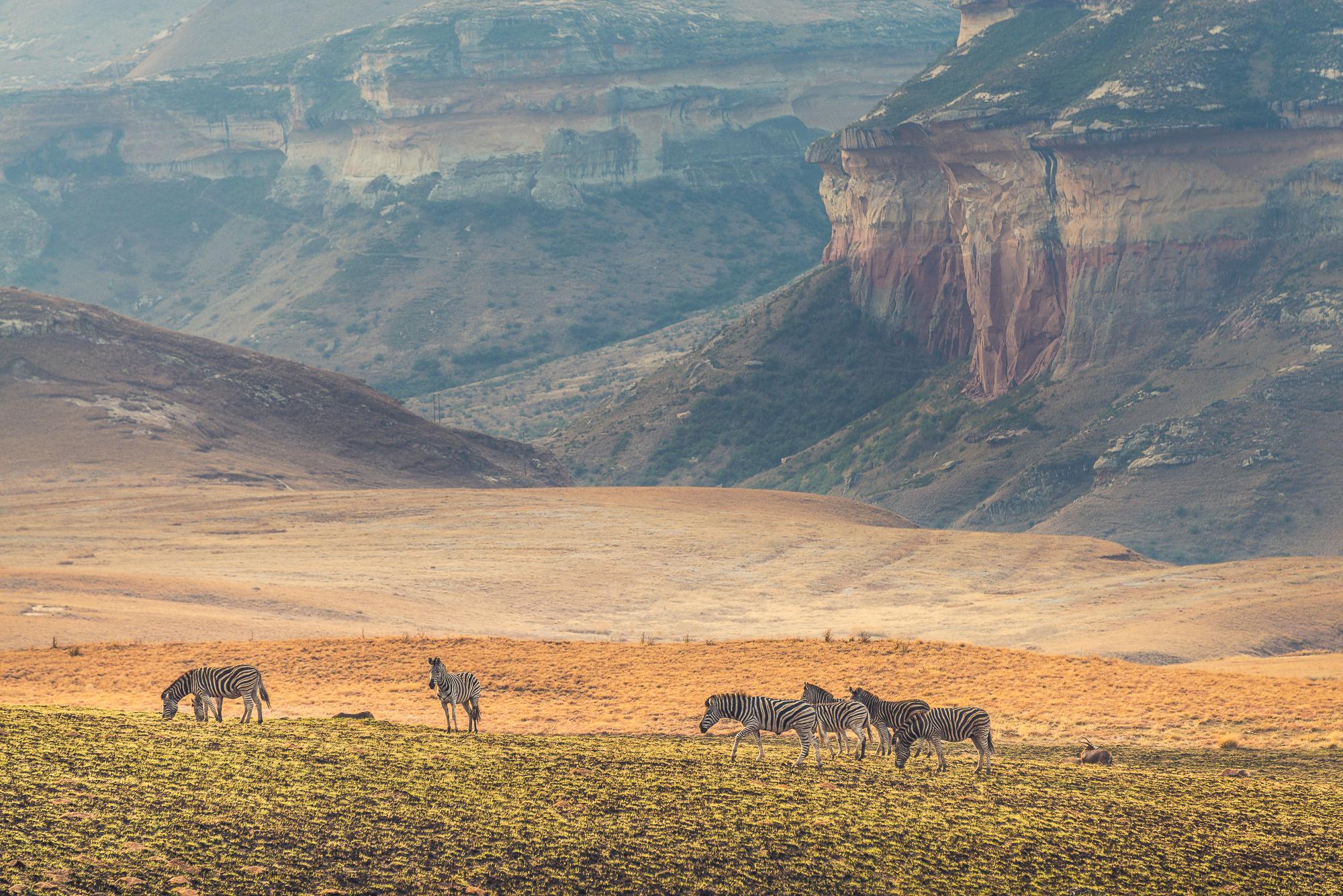 golden-gate-national-park-south-africa_l