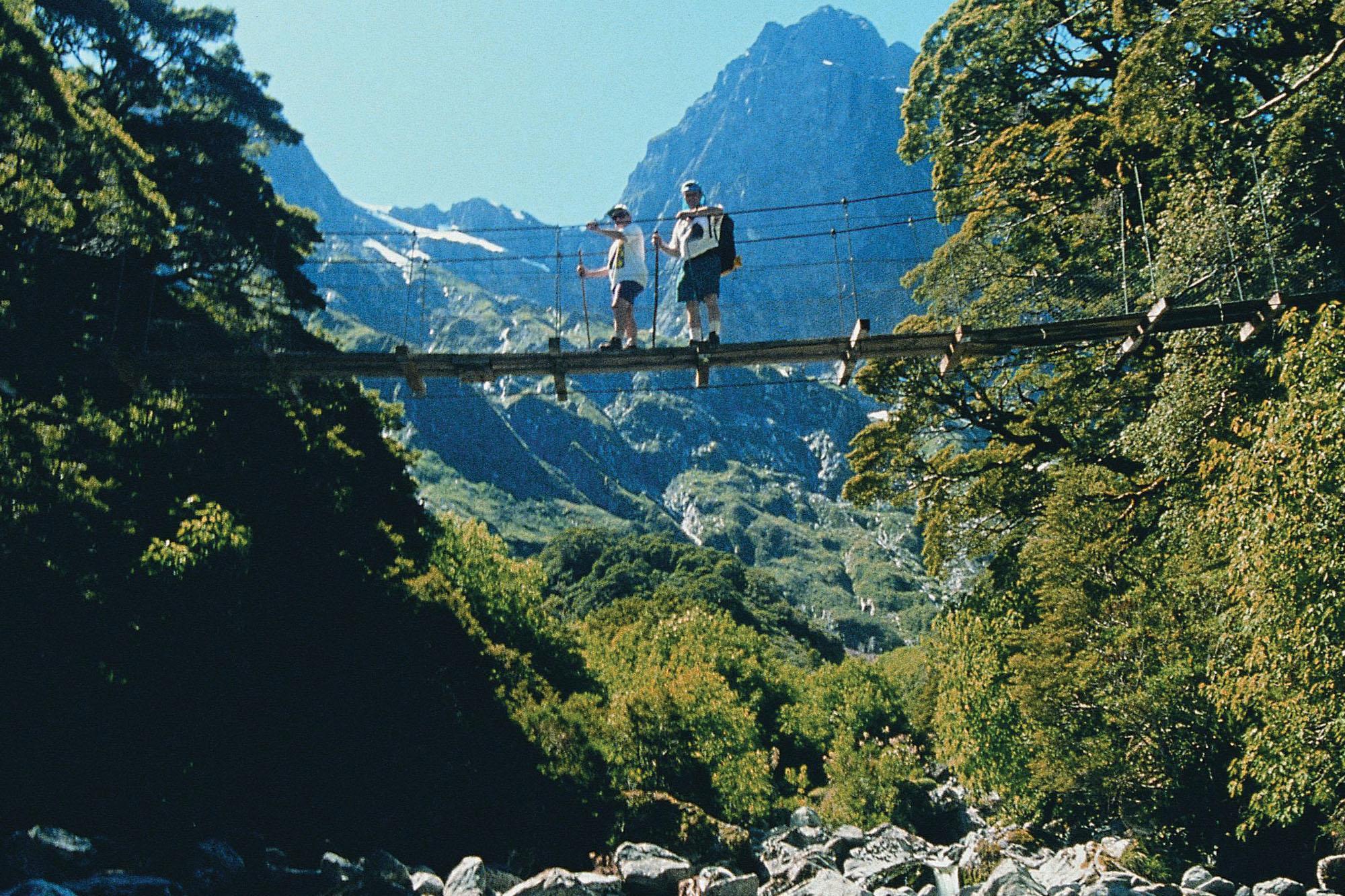 Milford_Track_swing_bridge_arthur_valley_32