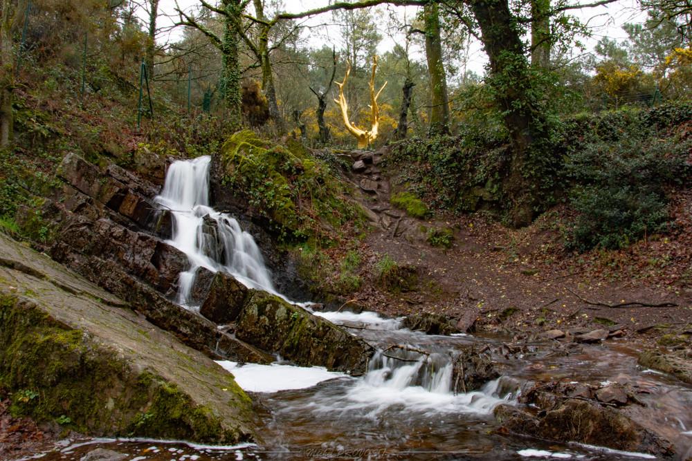 Cascade de l'arbre d'or