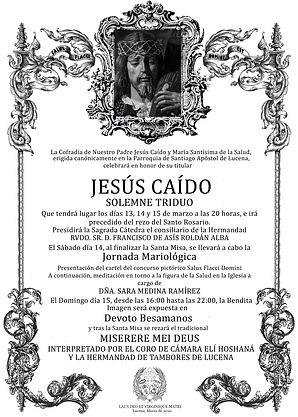 CARTEL CAÍDO 14..jpg