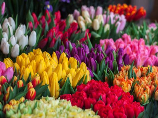 Les fleurs, des signes astrologiques