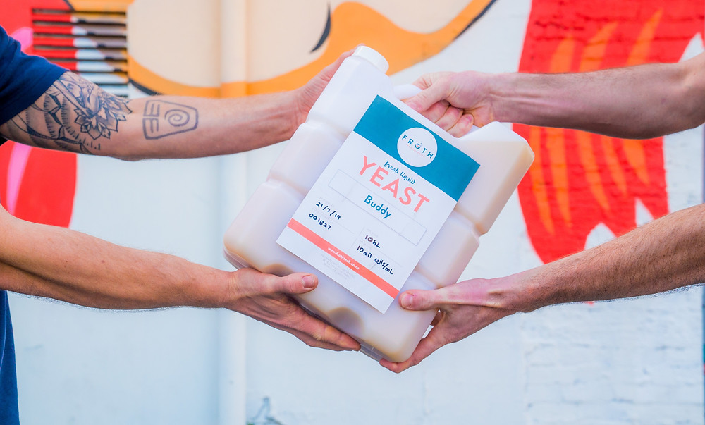 Froth Technologies Knook NZ Yeast