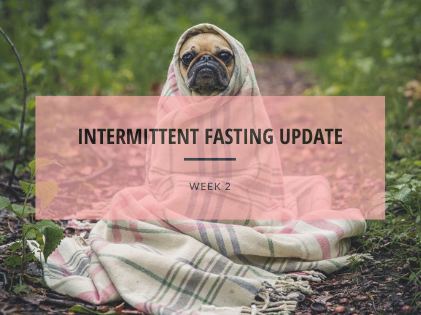 Intermittent Fasting Update - Week 2
