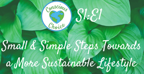 Small & Simple Steps Towards a More Sustainable Lifestyle