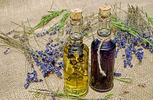 La Naturopathie, un médecine traditionnelle et complémentaire pour optimiser sa santé, Conseiller Naturopathe en Haute-Loire