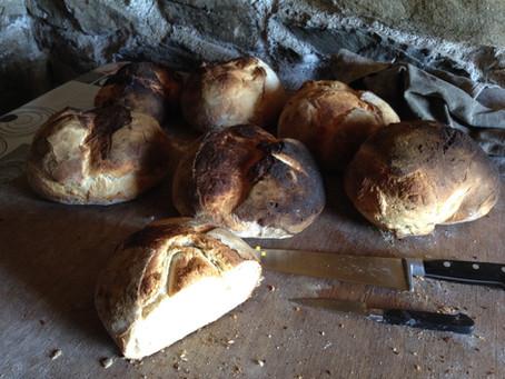 Quel est le meilleur pain pour votre santé ?