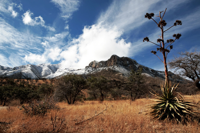 Sierra Vista snow.jpg