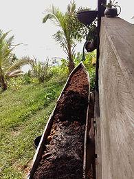 Voluntariado permacultura nuqui choco co