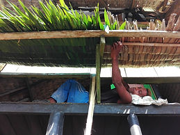 Voluntariado permacultura bioconstrucció