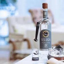 Beluga_group_image.jpg
