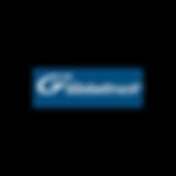 Globaltruck_logo.png