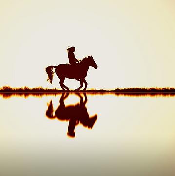 Les chevaux du sourire, un partenaire de choix pour les clients de Humanissue Consulting
