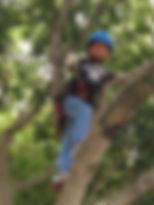 木登り体験⑥.JPG