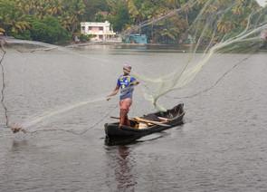 Ashtamundi Lake, Kerala, India. 2017.