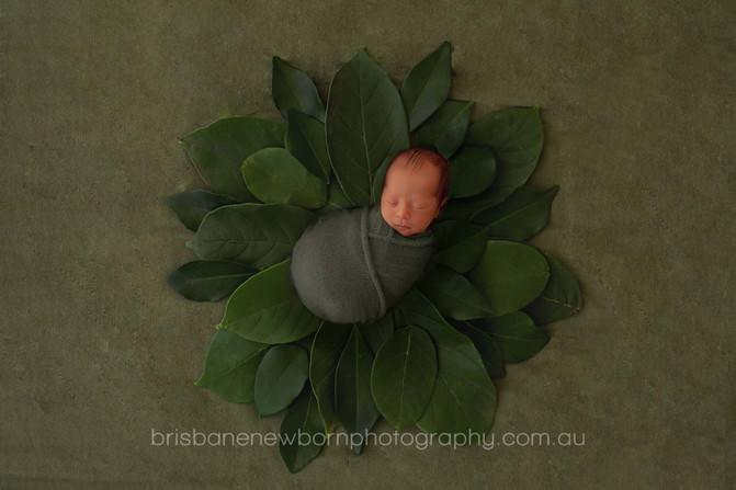 Baby Aiden - North Brisbane Newborn Photographer