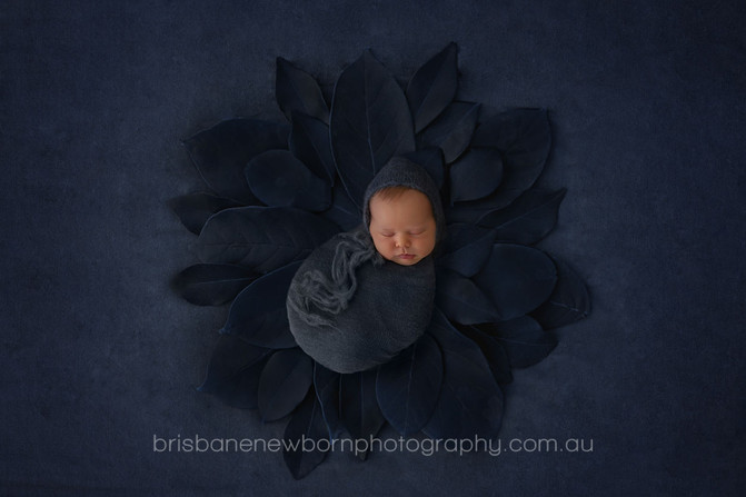 Baby Harry - Newborn Photographer Brisbane