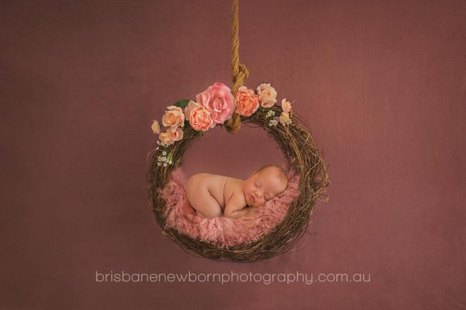 Baby Evie - North Brisbane Newborn Photographer