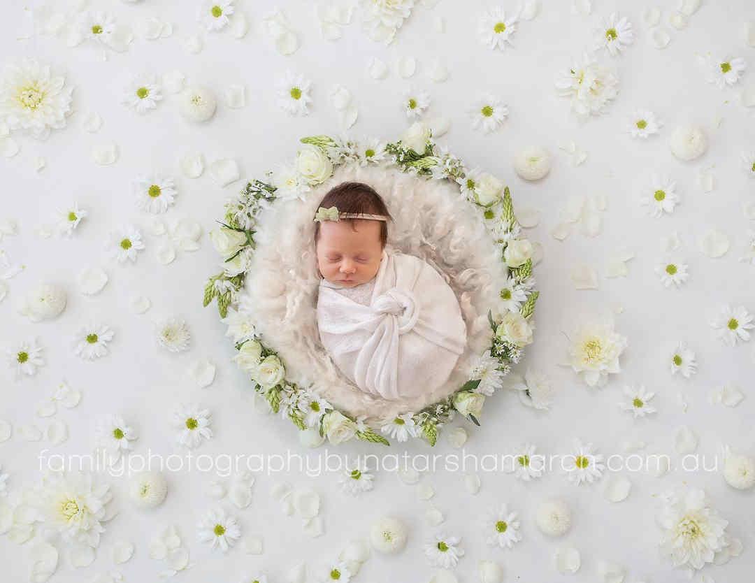 newborn-photographer-brisbane-daisy