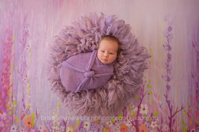 Baby Miranda - Brisbane Baby Photographer