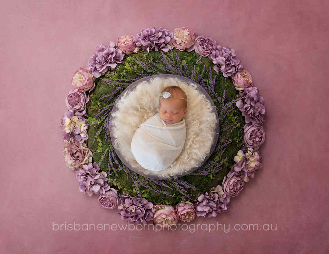 newborn-photographer-brisbane-flowers