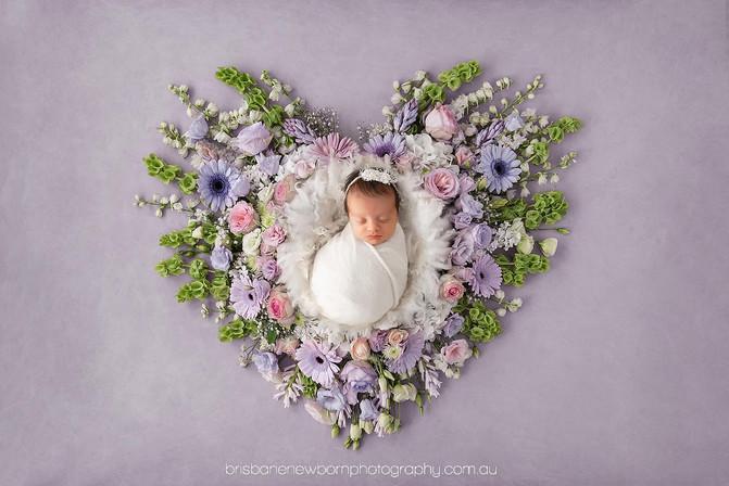 Baby Arlia - North Brisbane Newborn Photographer