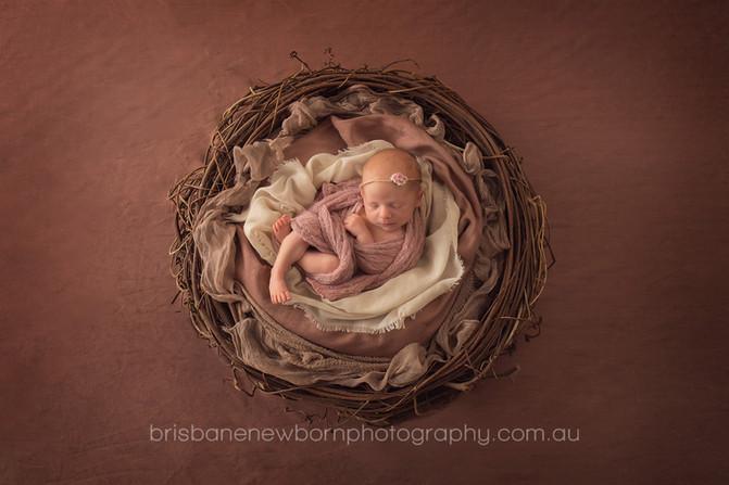 Baby Emily - Brisbane Newborn Photographer