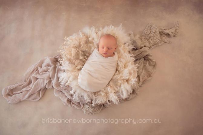 Baby Oscar - Brisbane Newborn Photographer