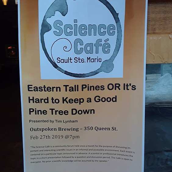 Science Cafe: 'It's Hard to Keep a Good Pine Tree Down'