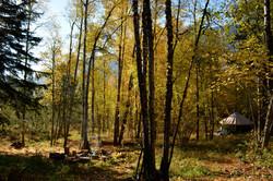 Yurt in the Fall