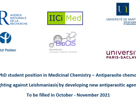 PhD position in Medicinal Chemistry, IICiMed University of Nantes October-November 2021