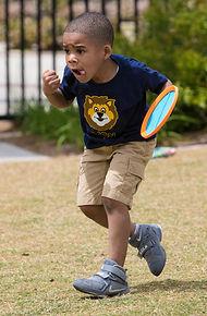 Determined lion.jpg