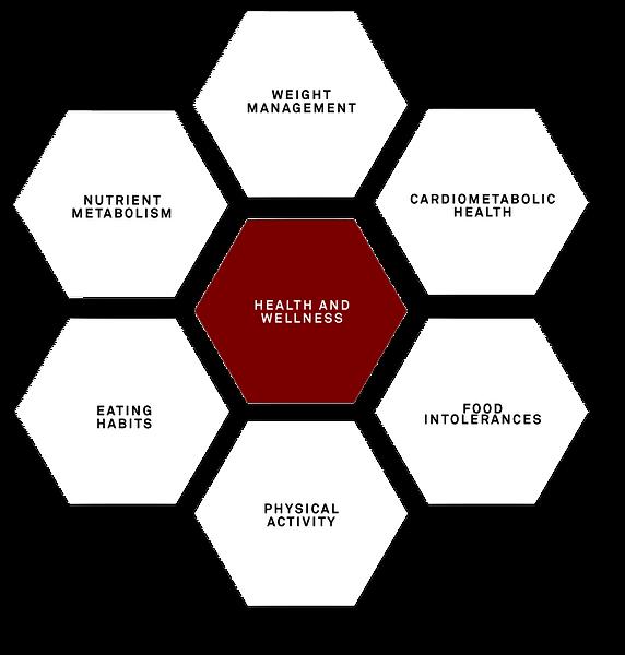 health-hexagon.png