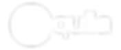 Aquila logo - white reversed.png
