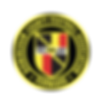 birminghamfa (for web).png